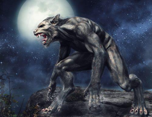 It's Just A Job – Werewolf